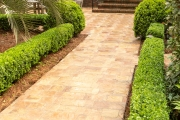 Path-patio-pavers-Between-the-Edges-NorthAugustaSC-landscape-design