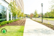 landscaping grovetown ga