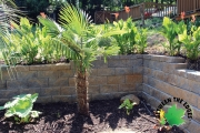 Poolside retaining wall north augusta sc