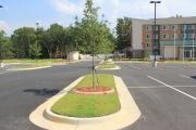 Plant Bed Landscaping Aiken SC