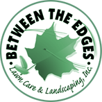 Between the Edges Logo