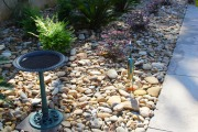 Landscaping-plants-river-rock-Between-the-Edges-NorthAugustaSC