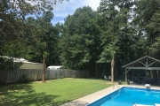 tree transplant north augusta SC