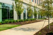commercial landscaping augusta ga