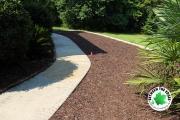 fresh-mulch-in-flower-bed-running-alongside-sidewalk-to-front-door-Between-the-Edges-North-Augusta-SC-landscaping