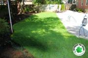 new-zoysia-sod-surrounding-backyard-pool-Between-the-Edges-landscaper-Augusta-GA
