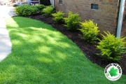 zoysia-sod-and-fresh-mulch-Between-the-Edges-landscaping-and-lawn-maintenance-North-Augusta-SC