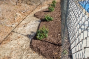 hardscaping north augusta sc