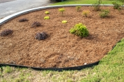 plant bed grovetown ga