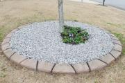 plant bed installation augusta ga